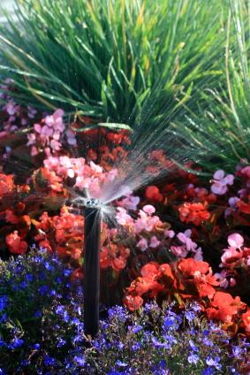 sprinkler-watering-color-XSmall